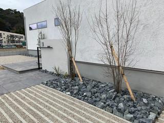 坂本邸_200625_0007.jpg